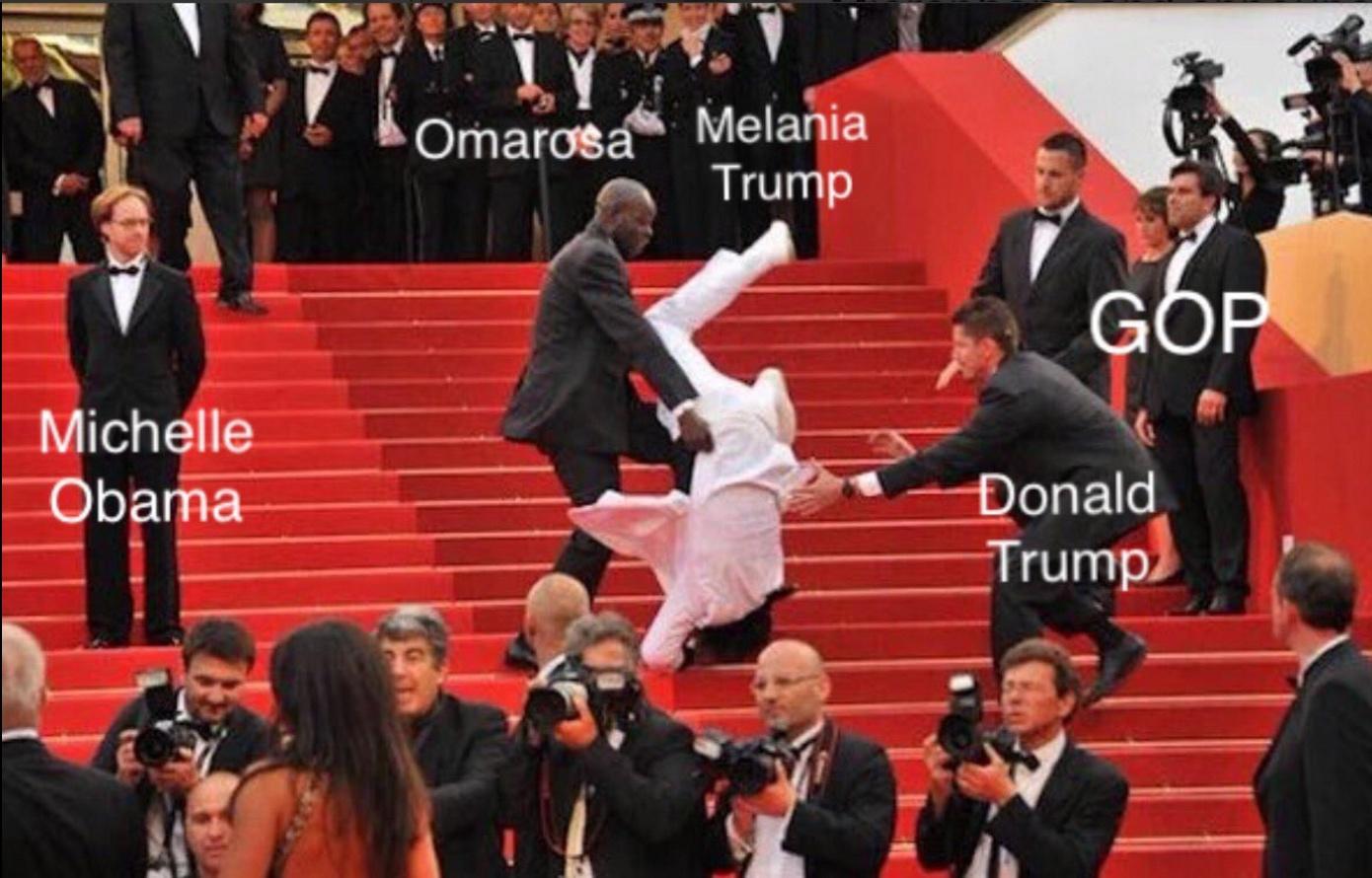 Melania Plagiarized Michelle Obama - Meme 6