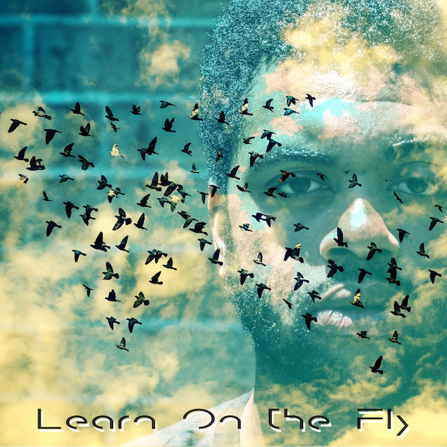 R.E.A.L. Tha Poet Learn On The Fly Cover Art