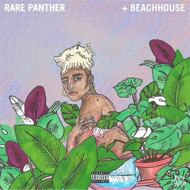 RarePantherCover6