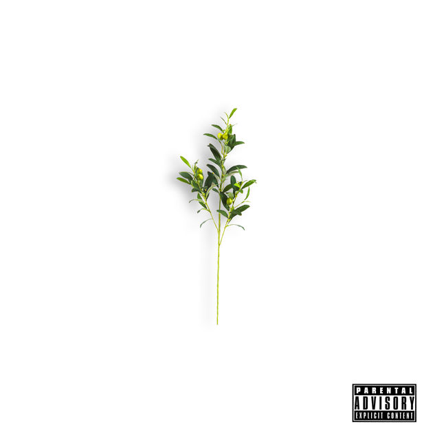 Locksmith Olive Branch album cover art
