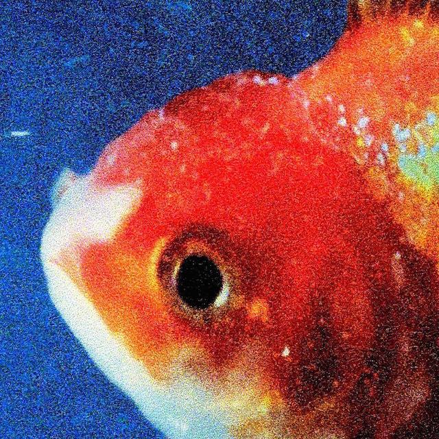 Vince Staples Big Fish Theory album cover art